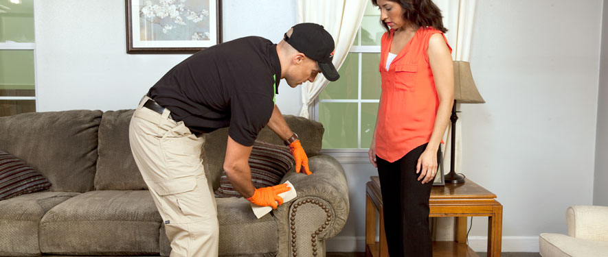 Visalia, CA carpet upholstery cleaning